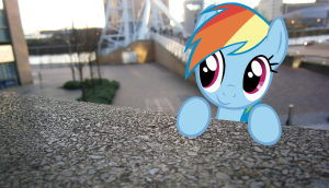 Dashie-in-real-life-my-little-pony-friendship-is-magic-31445590-1907-1097